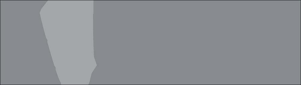 Valore Metals